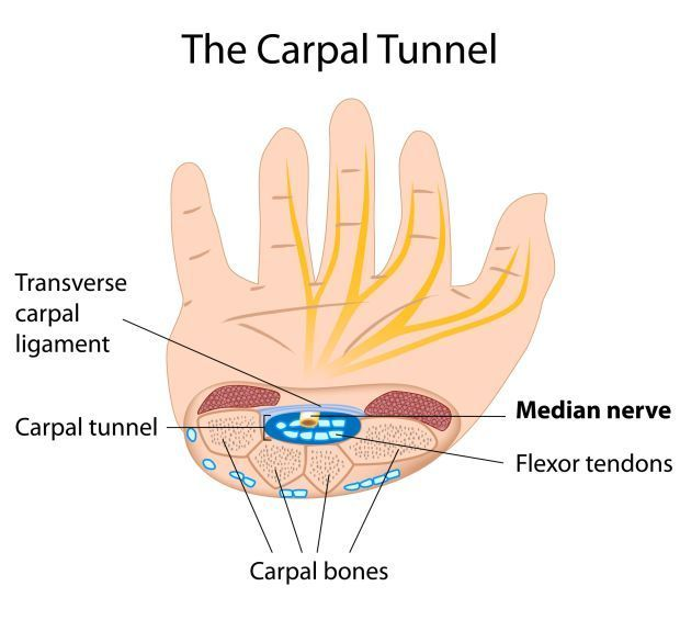the-carpal-tunnell